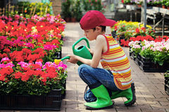 trädgårdsmästare little royaltyfria foton