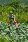 Trädgårdsmästare med hacka 5 Royaltyfri Foto