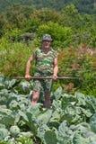 Trädgårdsmästare med hacka 6 Royaltyfri Bild