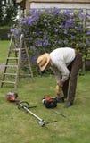Trädgårdsmästare med hjälpmedel som klipper en häck royaltyfri foto