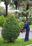 Trädgårdsmästare på arbete Arkivfoton