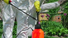 Trädgårdsmästare som använder pumpsprejaren för att gödsla träd arkivfilmer
