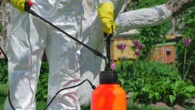 Trädgårdsmästare som använder pumpsprejaren för att gödsla träd stock video