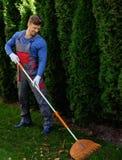Trädgårdsmästare som arbetar i en trädgård Arkivbild