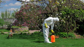 Trädgårdsmästare som arbetar med pumpsprejaren i gården arkivfilmer