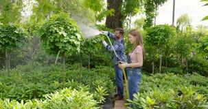 Trädgårdsmästare som bevattnar växter arkivfilmer