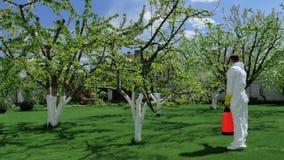 Trädgårdsmästare som förbereder sig att bespruta träd med gödningsmedel arkivfilmer
