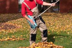 Trädgårdsmästare som har gyckel under hösttid Arkivfoton