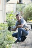 trädgårdsmästarearbete Arkivfoton