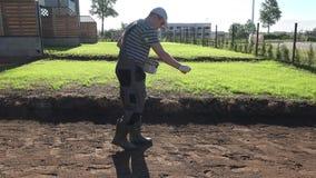 Trädgårdsmästarehänder som sprider grynig gräsmattagödningsmedel, innan att kärna ur gräsmatta statiskt stock video