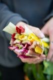 TrädgårdsmästareHolding Colourful Chard stammar Royaltyfri Foto