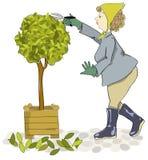 trädgårdsmästarelady Arkivbild