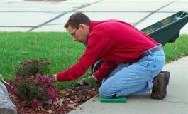 trädgårdsmästaremanworking Arkivbilder