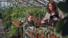 Trädgårdsmästaren för den unga kvinnan i förkläde och hennes dotter dansar i växthuset som har gyckel, kvinna är den hållande min lager videofilmer