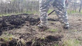 Trädgårdsmästaren gräver trädgården Odla jord stock video