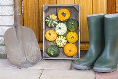Trädgårdsmästareutrustning Arkivfoto