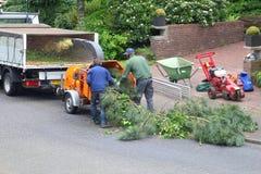 Trädgårdsodlare arbetar med den wood dokumentförstöraren, når de har klippt ett träd Royaltyfri Fotografi