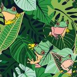 Trädgrodor och tropiska sidor arkivbild