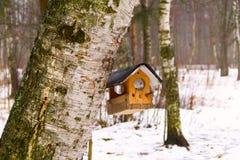 trädhus för fåglarna, gladlynta apartmen Royaltyfri Bild