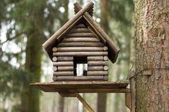trädhus för fåglarna, gladlynta apartmen Arkivbild