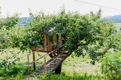 Trädhus - stuga - lantgård Royaltyfria Foton