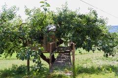 Trädhus - stuga - lantgård Arkivbild