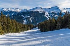 Trädkörningar på en Ski Resort i Europa royaltyfria foton