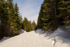Trädkörningar på en Ski Resort i Europa royaltyfri fotografi