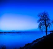 Trädkant av vatten under blått arkivbild