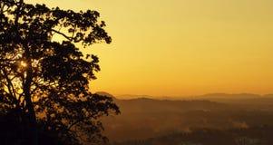 Trädkontur och dimmiga kullar på solnedgången Royaltyfria Foton