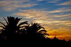 Trädkontur: Solnedgång i västra Australien Arkivbild