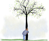 Trädkram Arkivbild