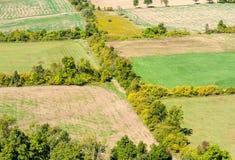Trädlinjer som gränsar tomma lantgårdfält Royaltyfria Bilder