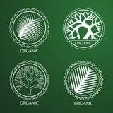 Trädlogo vektor illustrationer
