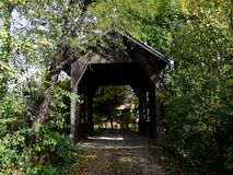 Trädold bro i Wolf Creek, Oregon arkivbild