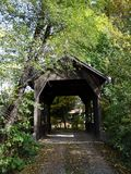 Trädold bro i Wolf Creek, Oregon arkivfoto
