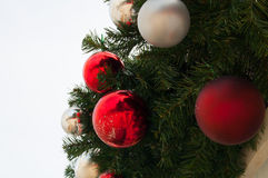 Trädprydnader Royaltyfri Fotografi