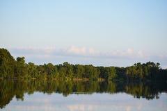 Trädreflexion på sjövatten Royaltyfria Bilder