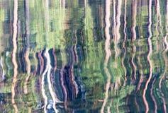 Trädreflexioner Arkivbilder