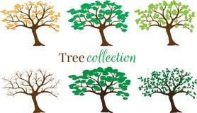 Trädsamlingsvektorn som isolerades på vit bakgrund, ställde in med sex träd i olika vädersäsonger Etikett logo, symbol stock illustrationer