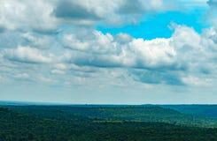 Trädskoglandskap Arkivfoto