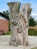 Trädskulptur Arkivfoto