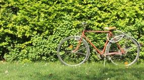 Trädstaket med en gammal cykel arkivbild