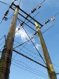 Träelektricitetspylon Fotografering för Bildbyråer