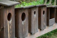 Träfågelhus i rad Fotografering för Bildbyråer