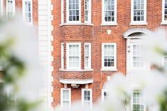 Träfönster för vit tappning på en vägg för röd tegelsten Arkivbild