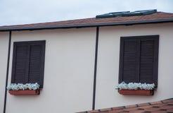 Träfönster med den stängda slutare och pelargon Arkivbild