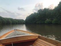 Träfartyg på en lugna flod i rainforestgrönområde Arkivfoton