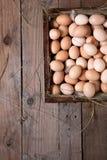 träfega ägg för ask Arkivbild
