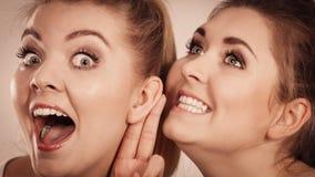 Träffande skvaller för två kvinnor Royaltyfria Bilder